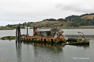 Wreck of the Mary D. Hume