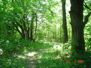 Kettle Moraine State Forest Hiking Trail